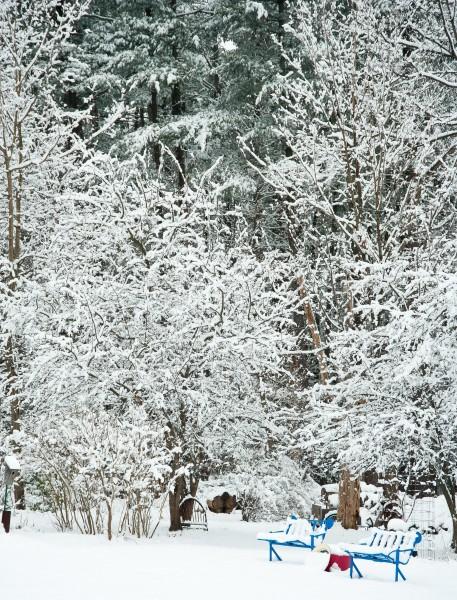1st Snow in Woodstock