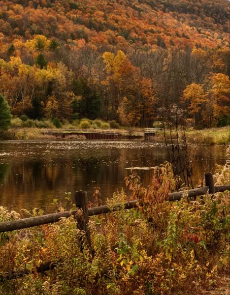 Mt Tremper, New YorkFall Afternoon