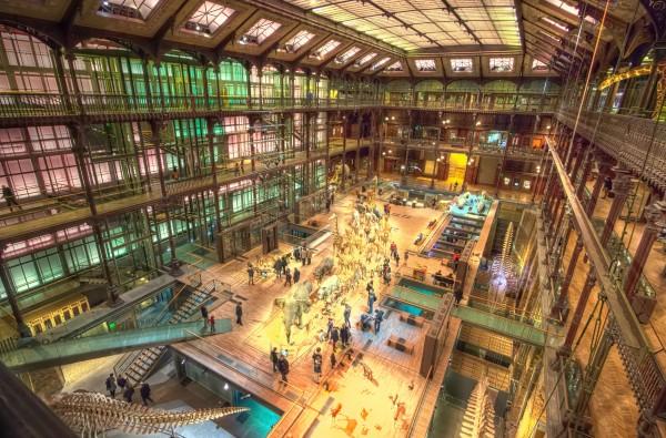 Paris Museum of Natural History, Evolution Exhibit